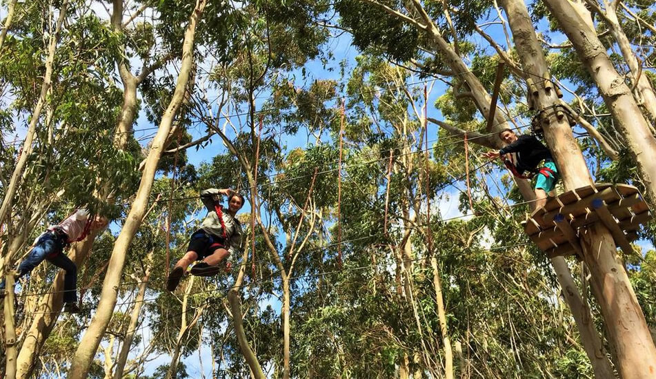 Teambuilding or Ziplining? Here's how to Tag your Team's best Pictures !