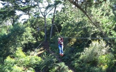 Enjoy your family holidays on the Garden Route with a great day of outdoor activity at Acrobranch