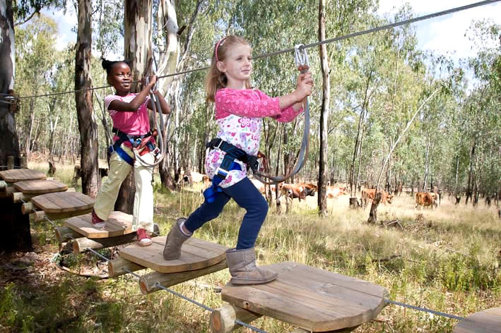 School outing at Acrobranch in Centurion