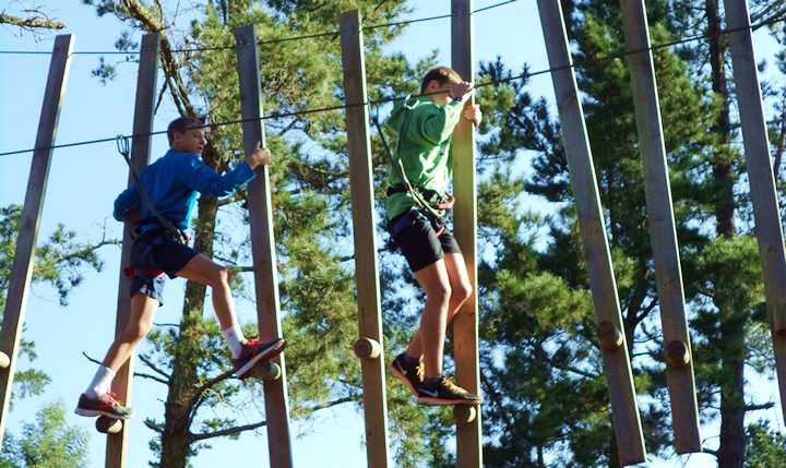 outdoor-activity-treetop-capetown
