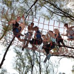 Zip Lines and Outdoor Activity Parks