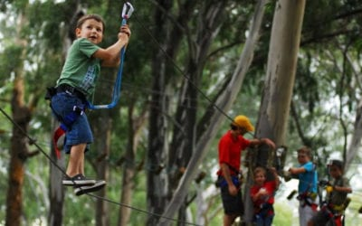 Birthday Activities for Kids : 5 Reasons to celebrate at Acrobranch