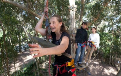 Reasons to Visit Acrobranch Adventure Parks for Your Year-End Functions