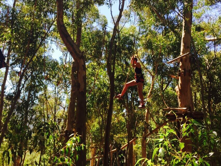 Cape Town Blogger gets a workout at Acrobranch