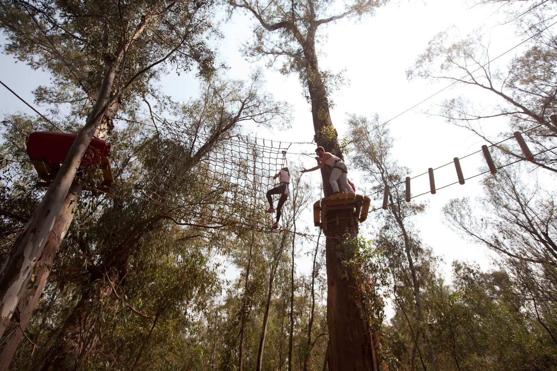 Outdoor Activity Park Pretoria Long Zip Line Team Building Wiring Harness Branched Mg 1177 1