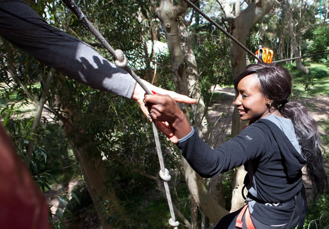 Team-building to remember: Take your Team to the Trees