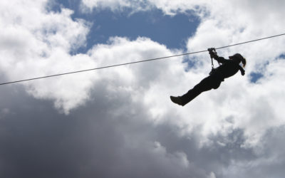 Ziplines are Awesome !