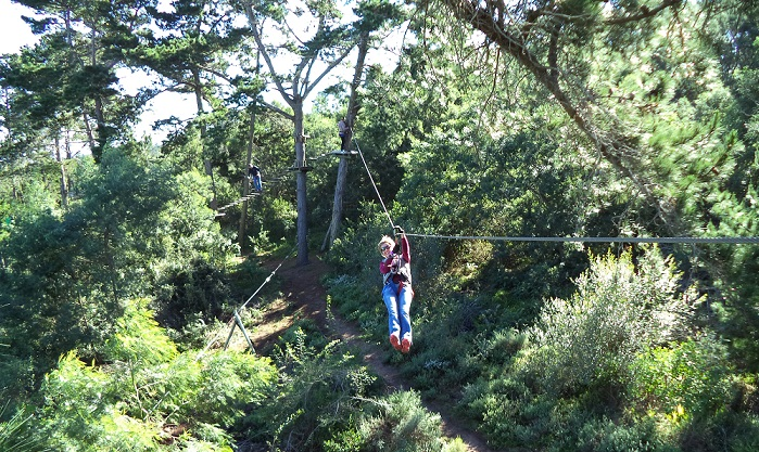 Acrobranch, Constantia - Things to do in Cape Town for kids